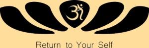 Ohm Logo dksun